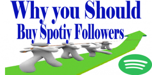 WHY YOU SHOULD BUY SPOTIFY FOLLOWERS